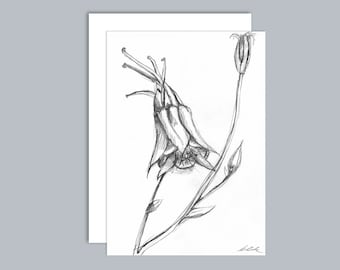 Illustrated Aquilegia flower A6 greeting card- Design 2