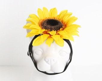 Sunflower Pet Headband, Pet Head Bands Photo Prop, Dog & Cat Accessories, Fall Autumn Halloween