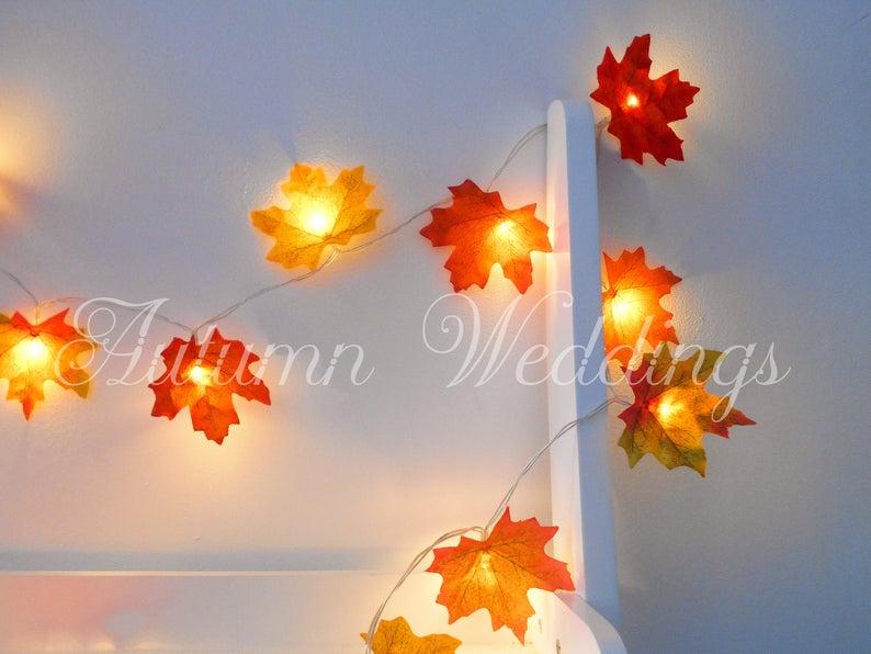 Autumn Fairy Lights 1-10m 'Mixed'  String Lights image 0