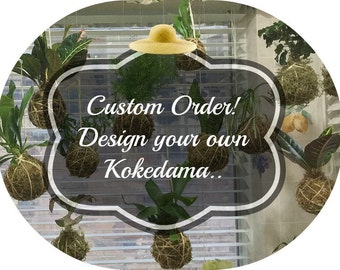 Custom Kokedama moss ball plant, Hanging plant gift for her, custom string colors,Indoor houseplant gift, or indoor garden air plant