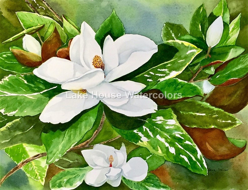 Magnolia Southern Flowers White Green Trees Wall Art Etsy