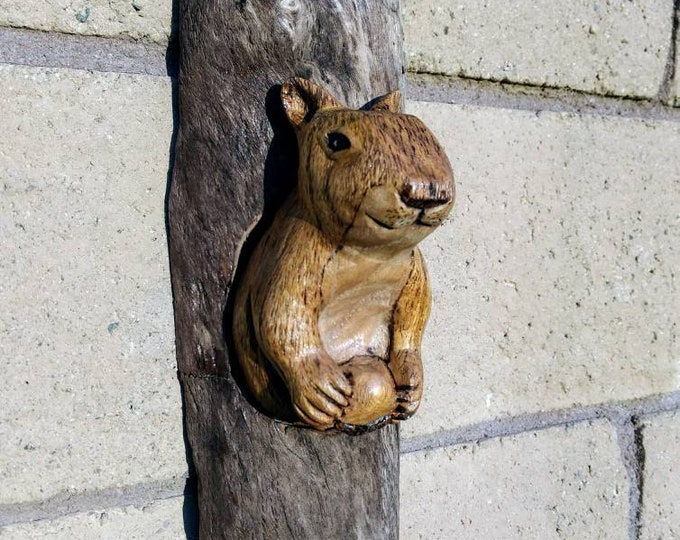Cosmo the Squirrel. Wall Art.