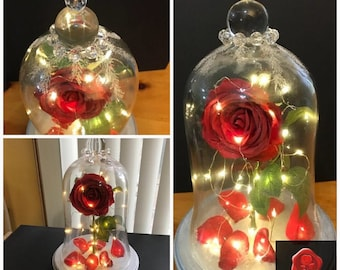 Enchanted Rose Display with wireless remote control lighting effects