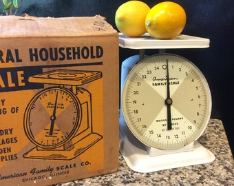 Vintage American Family Scale Co. Chicago Illinois General Household Scale Food Laundry Packages Garden Supply Scale Original Box Kitchen
