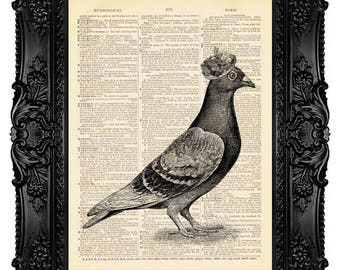 Mrs. Pigeon, Bird in Fancy Hat, Dove - ORIGINAL ARTWORK -Dictionary Art Print Vintage Upcycled Antique Book Page no. 310