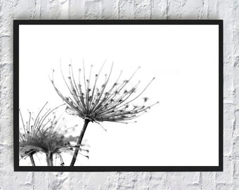 Mid century modern yellow flowers wall prints marigold etsy printable flowers flowers art print minimalist flowers black and white flowers poster download flowers wall art home decor nature mightylinksfo