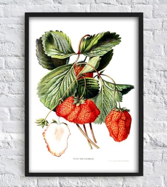 Erdbeeren Druck Erdbeere Wand Kunst Küche Druck Wand Kunst | Etsy
