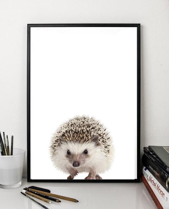 Igel Druck Niedlichen Tiere Drucken Wand Kunst Dekor Kindergarten Druck Digitaler Download Poster 5 X 7 8 X 10 12x16 Grau Weiß Minimalistische