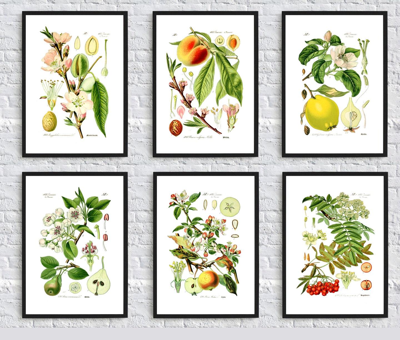 Funky Retro Vintage Kitchen Decor - Fruit & Vegetable ...