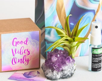 Good Vibes Only Best Friend Gift Office Gift Coworker Amethyst Crystal Air Plant Birthday Gift You Are A Gem Long Distance Gift Hostess Gift
