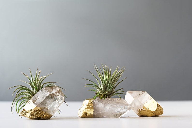51014d772653 Air Plant Gold Dipped Quartz Crystal Desk Accessories Best
