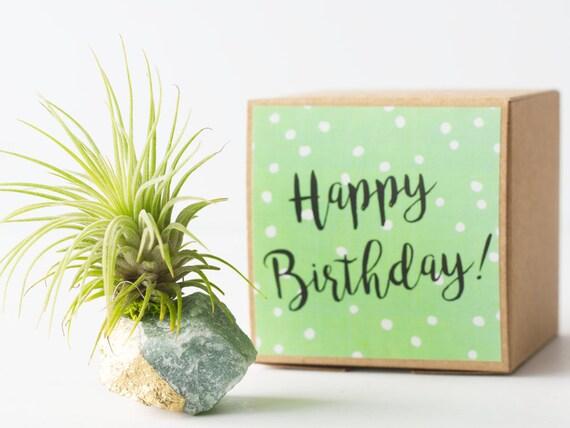Green Aventurine Good Luck Gift Happy Birthday Crystal