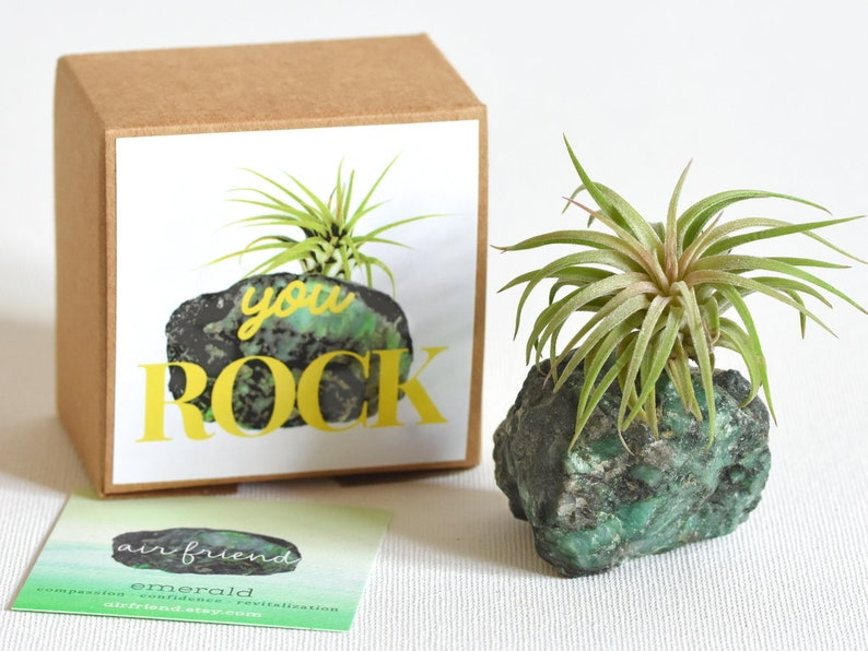 Emerald You Rock Air Plant Crystal Best Friend Gift Thank image 0