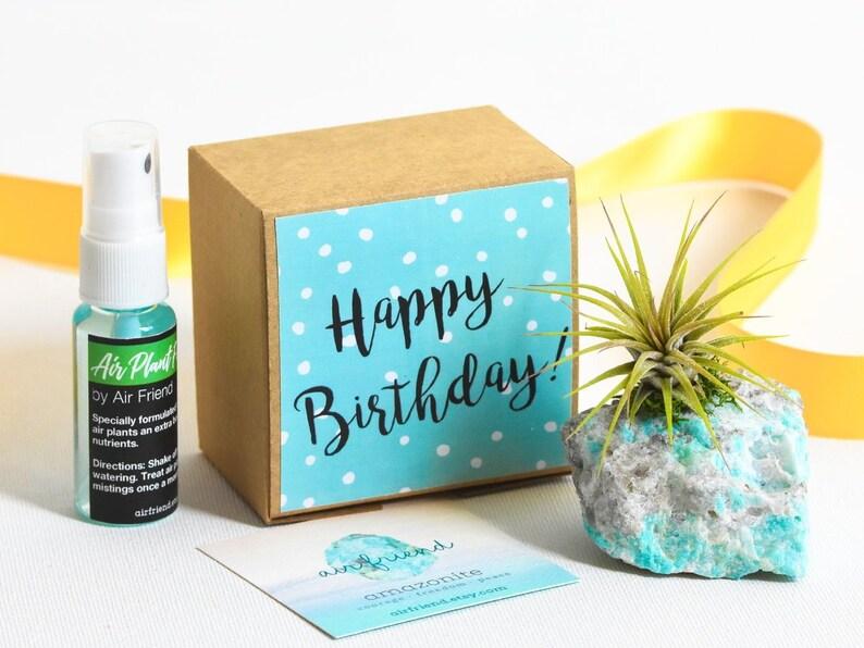 Amazonite Birthday Gift Blue Happy