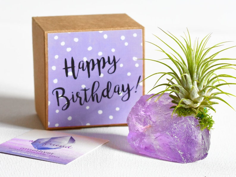 Amethyst Crystal Happy Birthday Gift February Birthstone