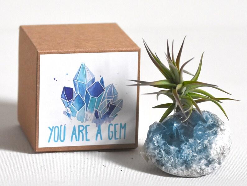 Best Friend Gift Coworker Office Celestite Blue Crystal