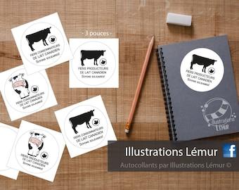 Illustrations Lemur