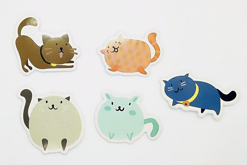 Candy colour cats cute kawaii kitsch box of stickers