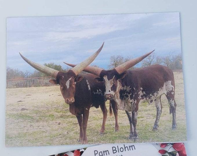 "Artist MAGNET  ""Watusi Cows of Texas"" Metal surface decor/ Farmhouse Fridge magnet / small gift idea /3.5x 4.75"" small art"