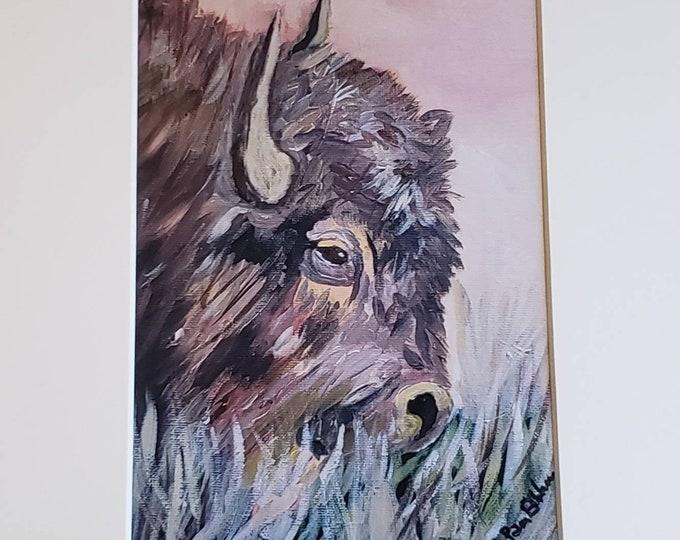 "Artist PRINT ""Grazing Buffalo "" -  5x7 print matted in 8x10 White Mat-"