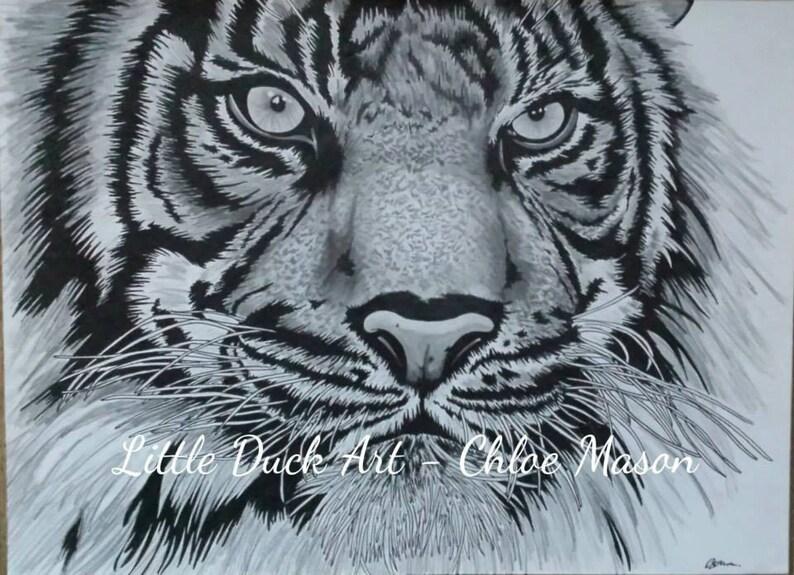 Tierische Kunst Tiger Zeichnen