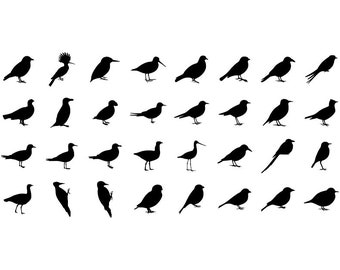 Birds - Download Digital Clipart Silhouette Vector Files