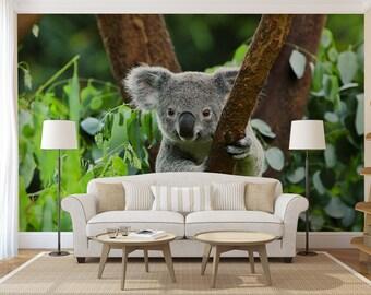 Behang Kleur Eucalyptus : Koala behang etsy