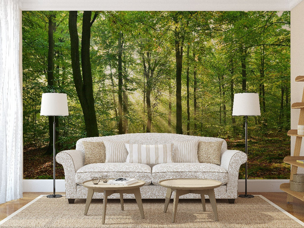 Morning In The Forest Wall Mural Trees Wall Mural Forest