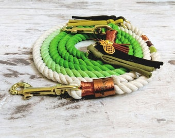 Dog Leash * Holi * Tropical Dreams