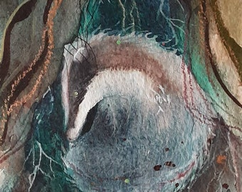 Little Brock Badger curled and cosy, original watercolour by Shari Hills