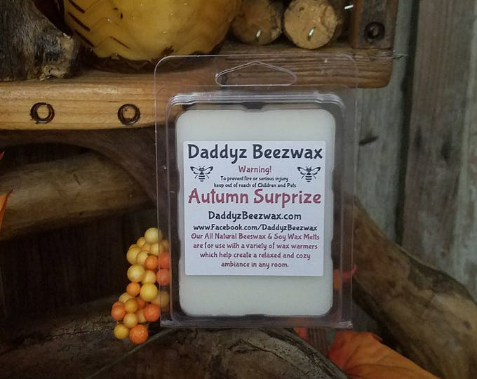 Autumn Surprize: Scented All Natural Air Purifying Beeswax and Organic Soy Wax Melts! 6 Blocks Per Pack.