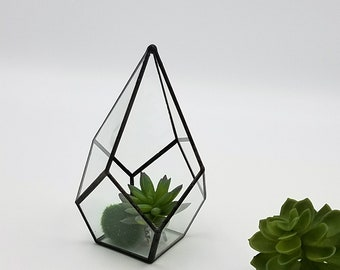ES Glass Terrarium/mini Greenhouse/ Tabletop Succulent Planter