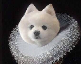 Pet drawing, pet memorial, custom dog portrait, pet portrait custom, pet portrait, custom pet portrait, pet painting, dog portrait