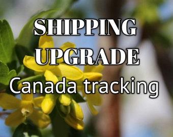 SHIPPING UPGRADE - Canada Tracking
