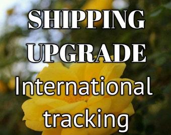 SHIPPING UPGRADE - International Tracking