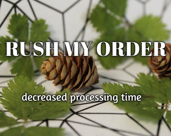 Rush my Order - Decreased Processing Time