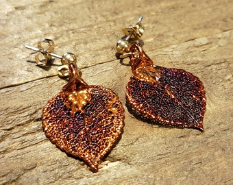 Iridescent Copper Dipped Real Aspen Tree Leaf Stud Dangle Earrings Nature Outdoor Earth Jewelry Beautiful (E282)