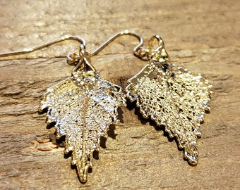 Gold Dipped Real Birch Tree Leaf Drop Dangle Earrings Nature Outdoor Earth Jewelry Beautiful (E278)