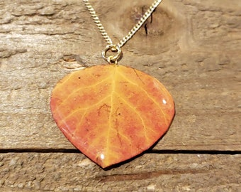 Real Preserved Aspen Leaf In Resin Necklace Pendant Outdoor Rustic Nature Earth Jewelry Tree Plant (N670)