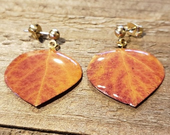 Resin Aspen Real Tree Leaf Post Stud Earrings Nature Jewelry Rustic Natural (E291)