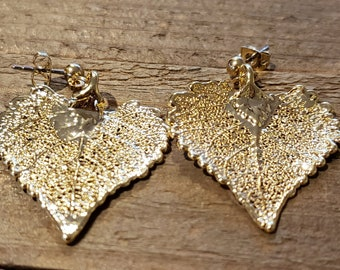 Gold Dipped Real Cottonwood Tree Leaf Drop Dangle Earrings Nature Jewelry (E296)