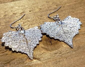 Silver Dipped Cottonwood Tree Leaf Drop Dangle Earrings Nature Outdoor Earth Jewelry Beautiful (E275)