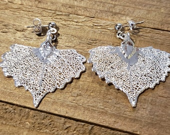 Silver Dipped Cottonwood Tree Leaf Drop Dangle Earrings Nature Outdoor Earth Jewelry Beautiful (E295)