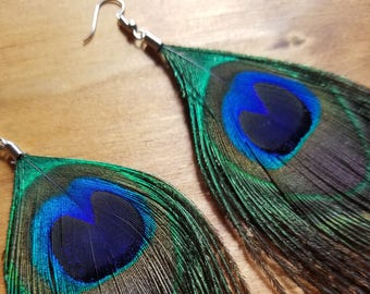 Real Peacock Feather Drop Down Dangle Earrings Natural Native American Style Collection Nature Jewelry Hippie Earth Boho