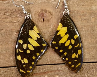 Yellow Real Butterfly Wing Earrings Preserved in Resin Nature Outdoor Women Jewelry Natural Earth Boho Hippie (E153)
