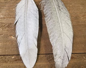Real Silver Painted Feather Drop Down Dangle Earrings Natural Native American Style Collection Nature Jewelry Hippie Earth Boho (E94)