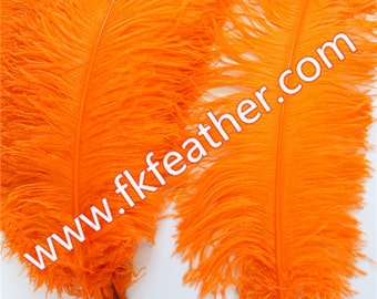 """26""""- 28"""" Ostrich Feather"""