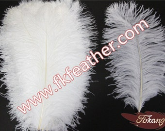"""20""""- 22"""" Ostrich Feather"""