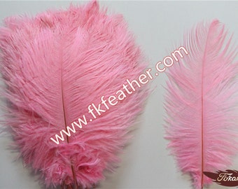 """8"""" - 10"""" Ostrich Feather"""