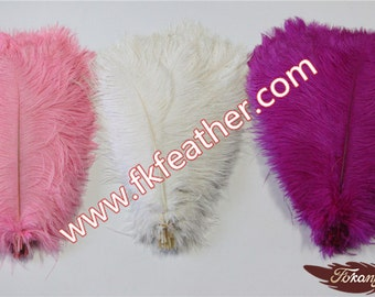 """14"""" - 16"""" Ostrich Feather"""
